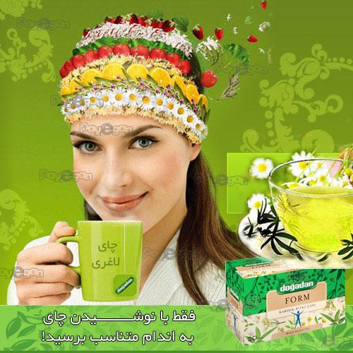 چای گیاهی لاغری دوغدان